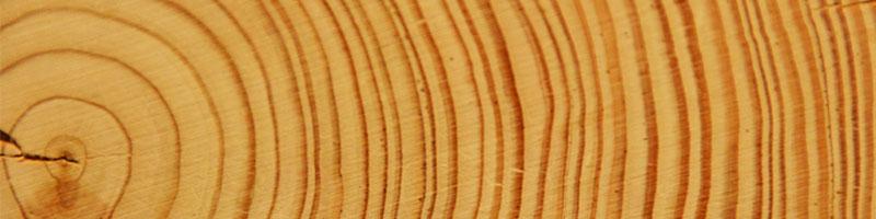 Fitnessgeräte aus Holz