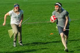 Quidditch Spielerrollen