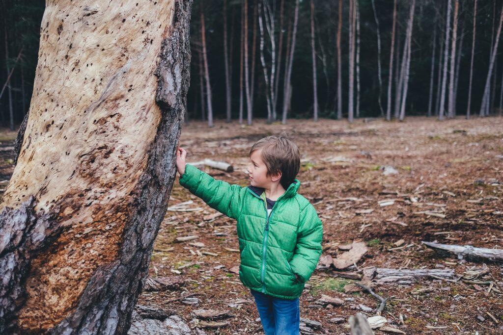 Ideen für Waldspiele