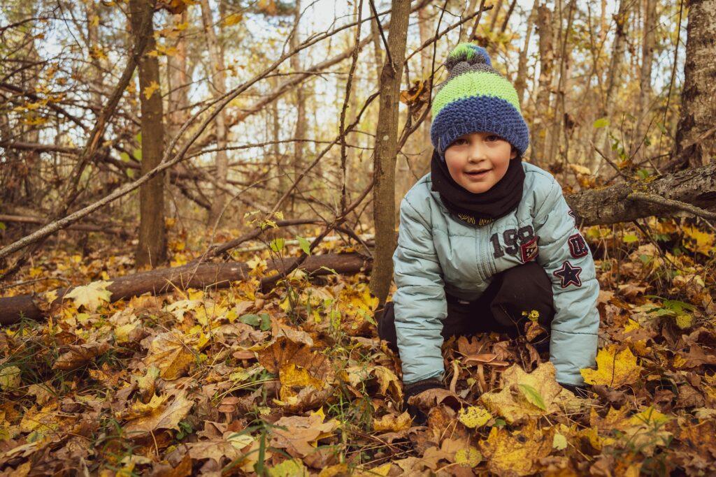 Waldspiele: Auf leisen Pfoten